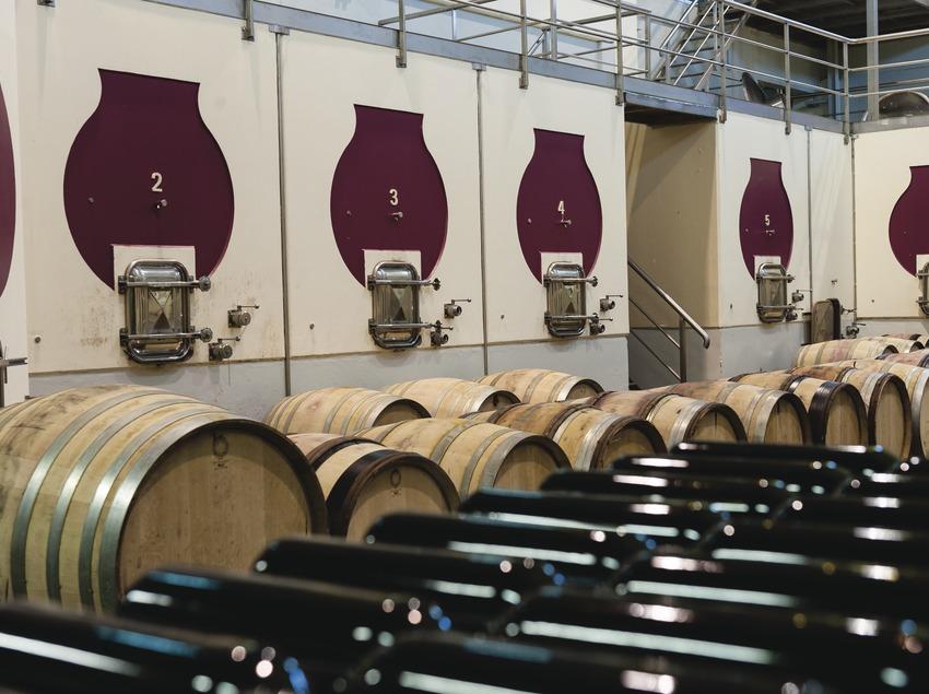 Bodegas Mas Alta, interior del celler amb cups, barriques i ampolles. (Marc Castellet)