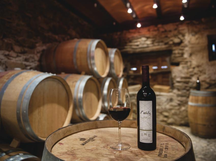 Costers del Ros, copa i ampolla de vi a la sala de degustació i celler.