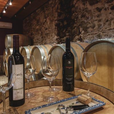 Costers del Ros, copes i ampolles de vi a la sala de degustació i celler.