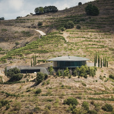 Ferrer Bobet, vista exterior del celler entre terrasses. (Marc Castellet)