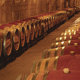Ruta enoturística: Tast de vins i caves al Penedès
