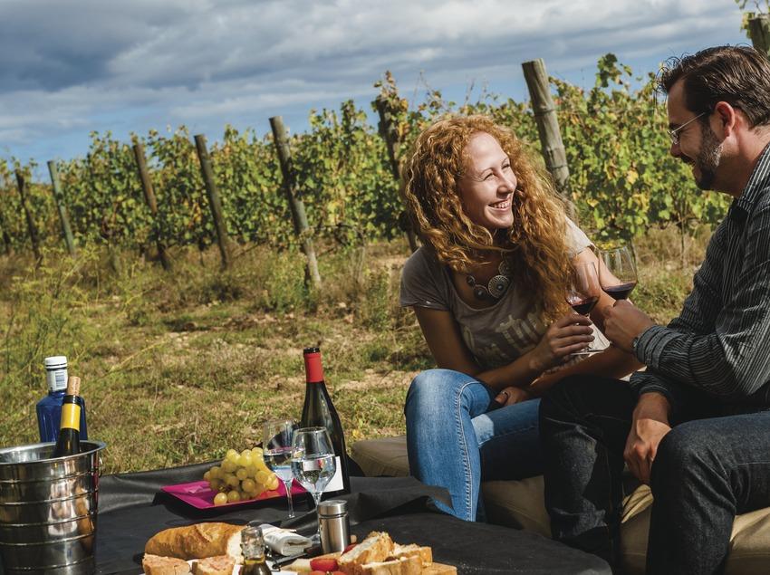 Terra Remota. Parella fent un pícnic i brindant amb vi al costat de les vinyes   (Marc Castellet)