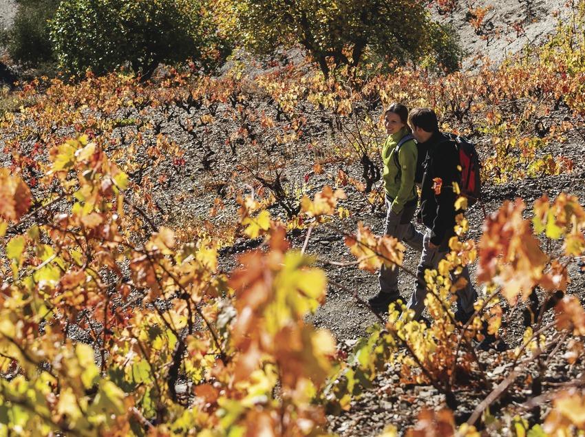 Priorat. Pareja practicando senderismo entre viñas.