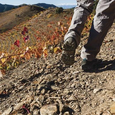 Priorat. Primer plà de botes de trekking d'un senderista entre vinyes de costers   (Marc Castellet)