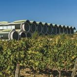 Hotel Mas Tinell. Vista del hotel desde las viñas   (Marc Castellet)