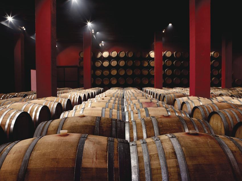 Ruta del vi de Lleida