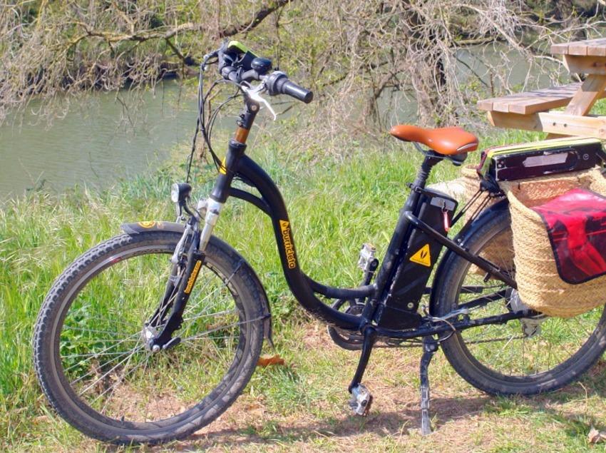 Recorre els Aiguamolls de l'Empordà en bicicleta elèctrica