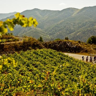 Ruta de cicloturisme de carretera Cambrils-Falset-Porrera-Cambrils