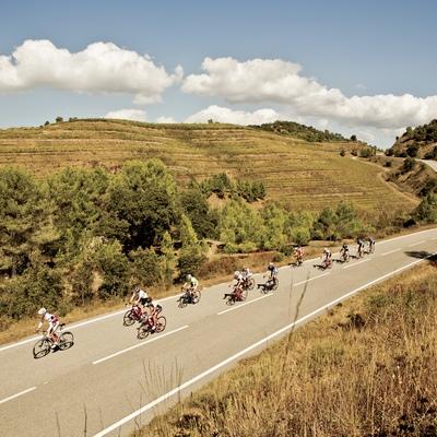 Ruta de cicloturismo de carretera Cambrils-Vandellós-Móra d'Ebre-Cambrils