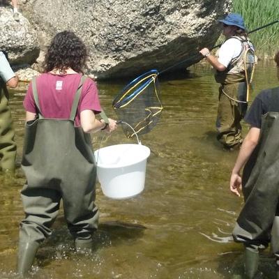 Gaudeix de la fauna salvatge del riu Montsant amb la família, els teus fills aprendran moltes coses sobre la pesca respectuosa amb el medi ambient. (Parc Natural del Montsant. ©Arxiu PNMON)