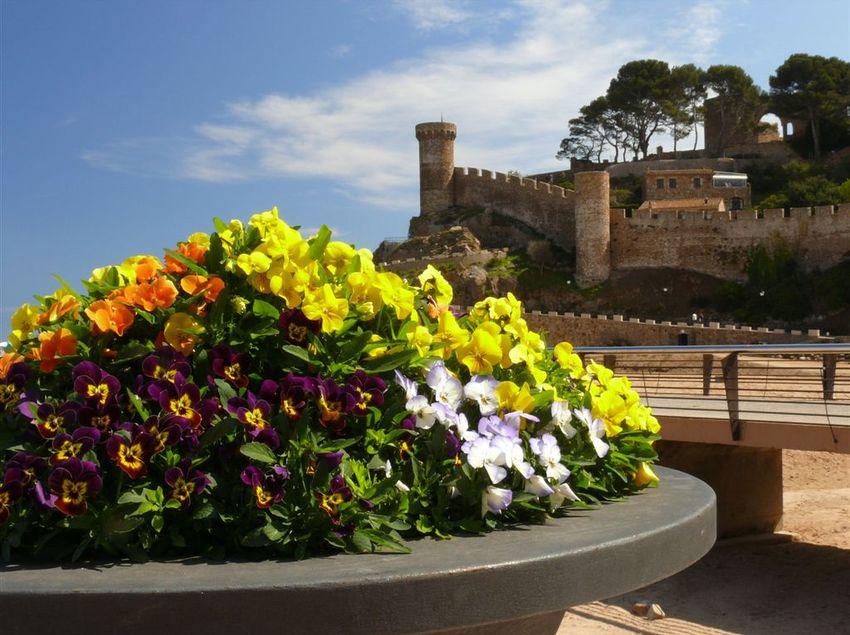 El castell de Tossa de Mar, un bon mirador per descansar i observar el mar. (Fundació Turística Santa Susanna)