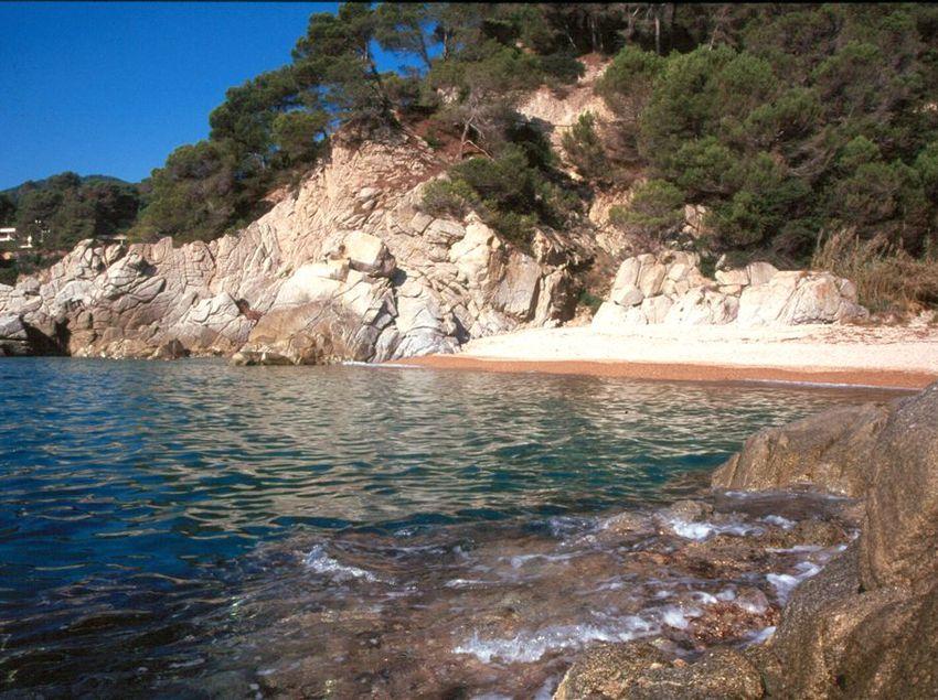 Les aigües transparents de la cala Llevadó de Tossa de Mar. (Fundació Turística Santa Susanna)