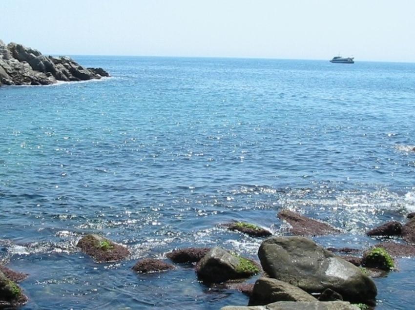 Gaudeix del fons marí a Tossa de Mar