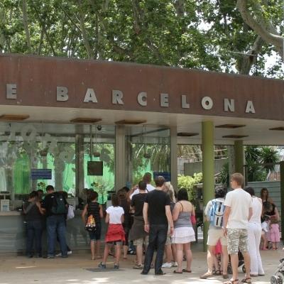 Zoo de Barcelona, un dia en família