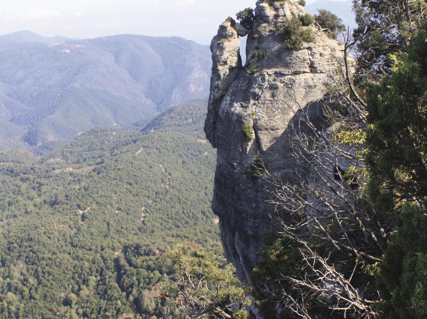 L'Agullola   (Territori Natural)