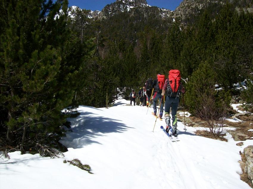 Excursió amb esquís     (Guies Vall Fosca)