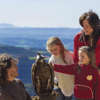 Nenes tocant el plomatge d'una àliga     (Zoo del Pirineu)