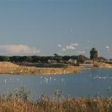 Espacio de Interés Natural del Delta del Llobregat