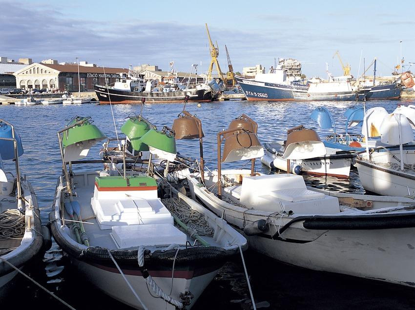 Embarcaciones de pesca en el puerto de Tarragona.  (Felipe J. Alcoceba)