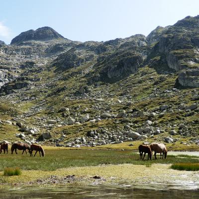 Estany de Guilo_Ruta Muntanyes en Llibertat     (Patronat de Turisme Terres de Lleida)