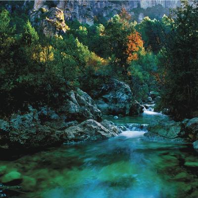 Barranc de la Llodriga, naixement del riu Brugent     (P. Ccal. de Turisme Muntanyes de la Costa Daurada)