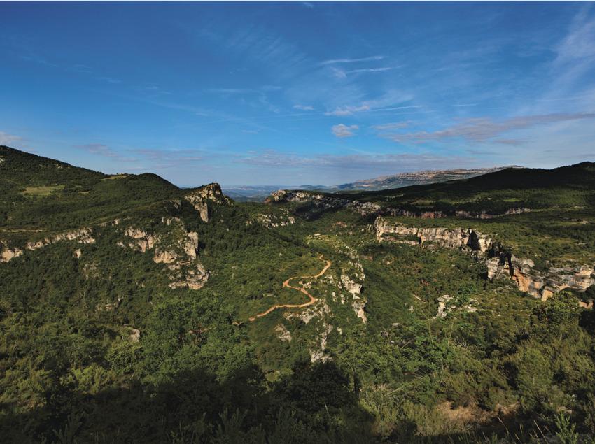 Serra de la Mussara. A la dreta, vessants del puig de Gallicant i a l'esquerra, separada pel riu Siurana, la Serra de la Gritella i el poble de Siurana i el Priorat     (P. Ccal. de Turisme Muntanyes de la Costa Daurada)