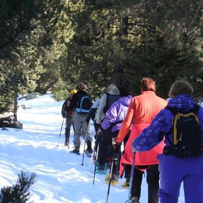 Excursió amb raquetes de neu    (Ecem Escola de Muntanya)