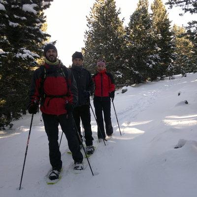 Excursionistes amb raquetes de neu entre avets     (INDÒMIT Centre d'Aventura)