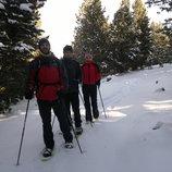 <p>Excursionistas con raquetas de nieve entre abetos</p>     (INDÒMIT Centre d'Aventura)