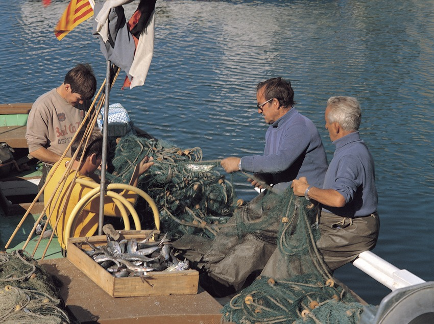 Pescadores recogiendo las redes dentro de un barco  (Francesc Gomà)