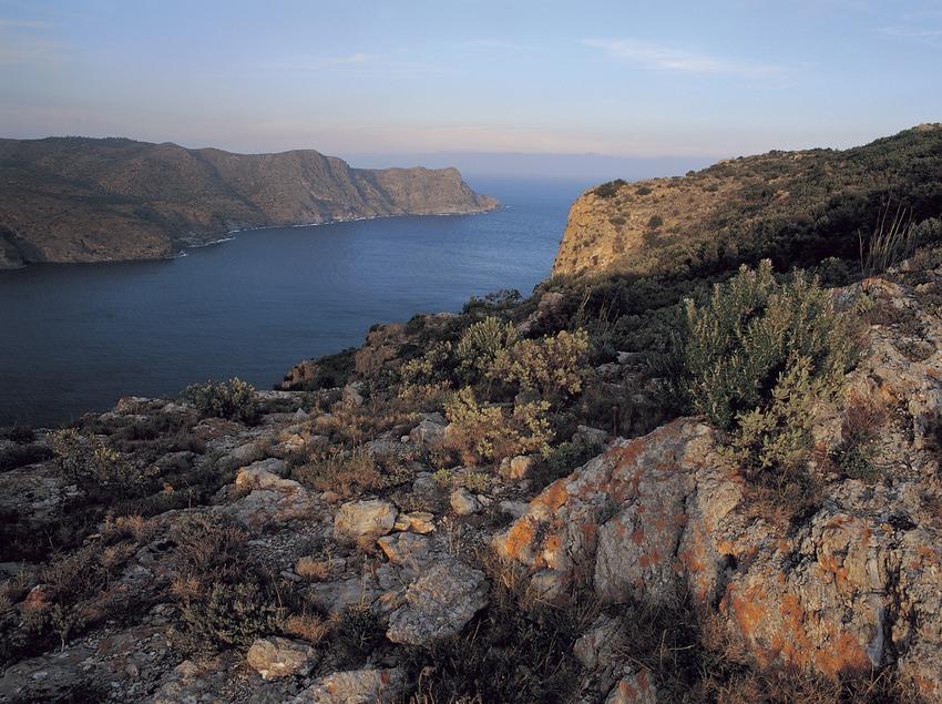 Punta de sa Figuera, al Parc Natural del Cap de Creus  (Oriol Alamany)