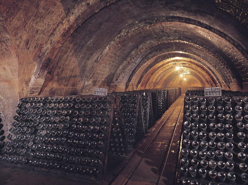 Interior de las cavas Codorniu