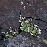 Parque Natural del Cap de Creus
