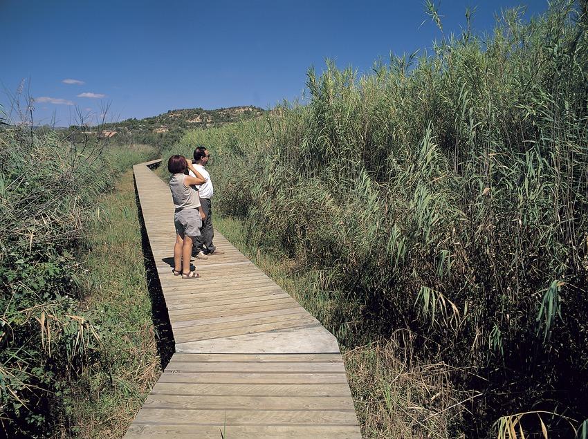 Pasarela en el Parc Natural del Delta de l'Ebre  (Oriol Alamany)