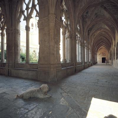 Claustro mayor del monasterio cisterciense de Santes Creus  (Toni Vidal)