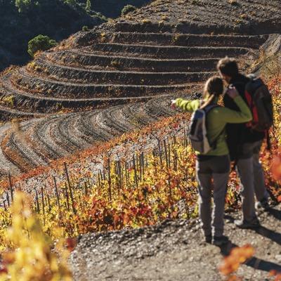 Priorat. Parella practicant senderisme entre vinyes de costers. (Marc Castellet)