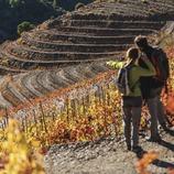 Priorat. Parella practicant senderisme entre vinyes de costers.
