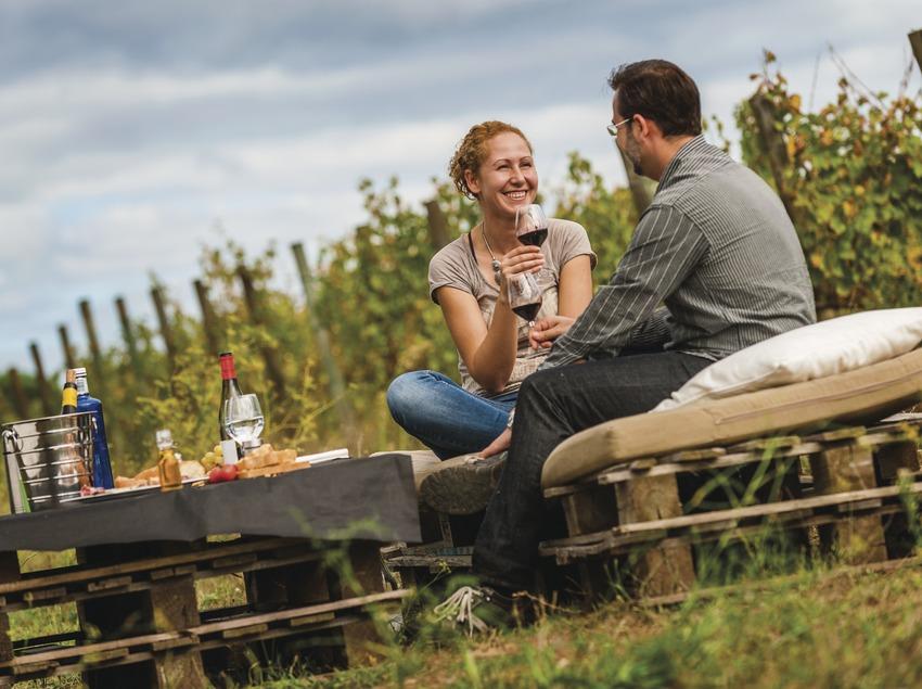 Terra Remota. Pareja de pícnic brindando con vino al lado de las viñas.