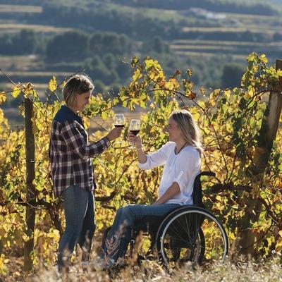 Vi i accessibilitat. Noia en cadira de rodes i acompanyant brindant amb vi entre vinyes.