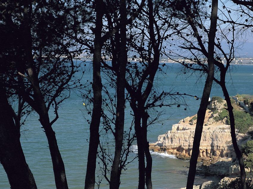 Vista de la Penya Tallada, al municipi de Salou, Costa Daurada.  (Rafael López-Monné)