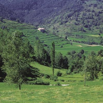 Paisatge rural prop de Vallfogona de Ripollès.  (Índex)