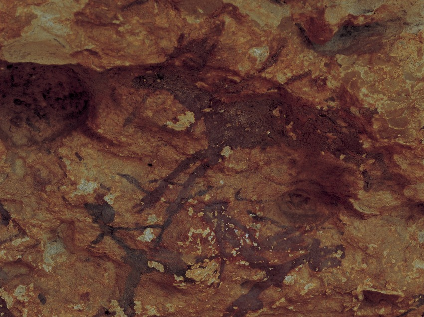 Pintures rupestres de la serra de la Pietat, Ulldecona. (Toni Vidal)