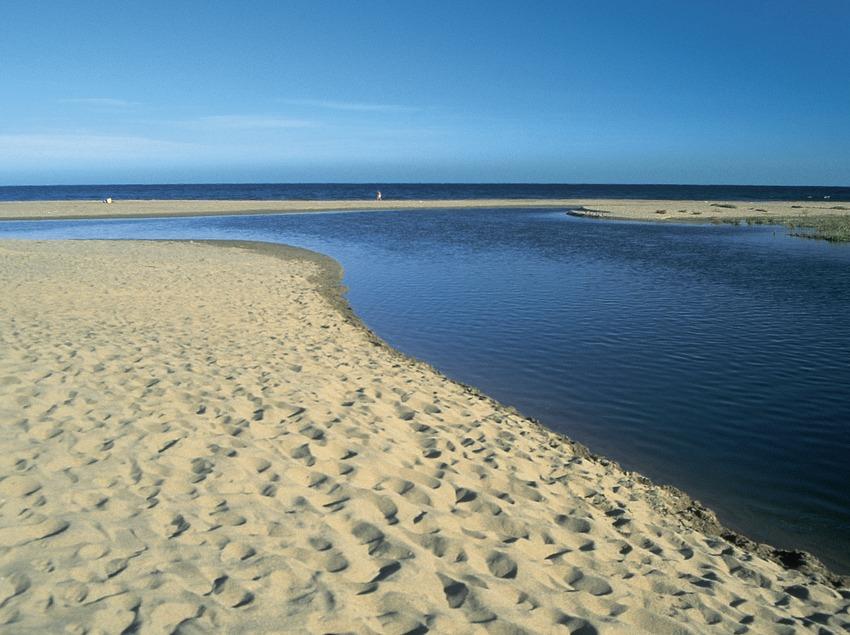 Desembocadura del río Muga, en el Parque Natural de Aiguamolls de l'Empordà.  (Servicios Editorials Georama)