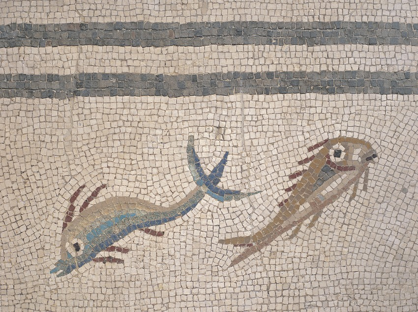Detalle del mosaico de los peces. Museu Nacional Arqueològic de Tarragona.  (Jordi Pareto)