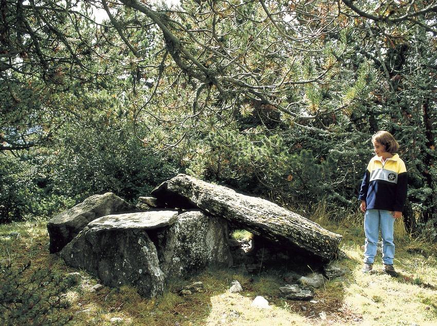 Dolmen de Coll Juvell.