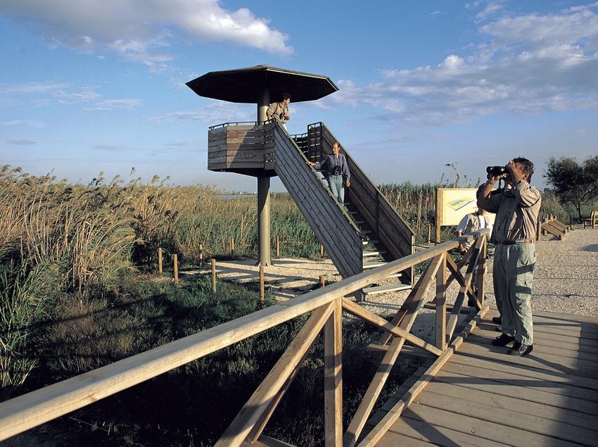 Mirador en el Parc Natural del Delta de l'Ebre.  (Rafael López-Monné)