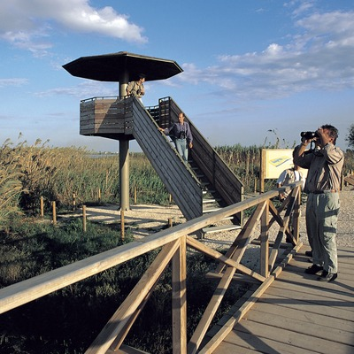 Mirador en el Parc Natural del Delta de l'Ebre.