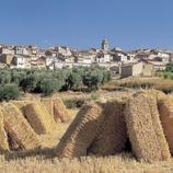 Fardos de paja y el pueblo de Arnes.