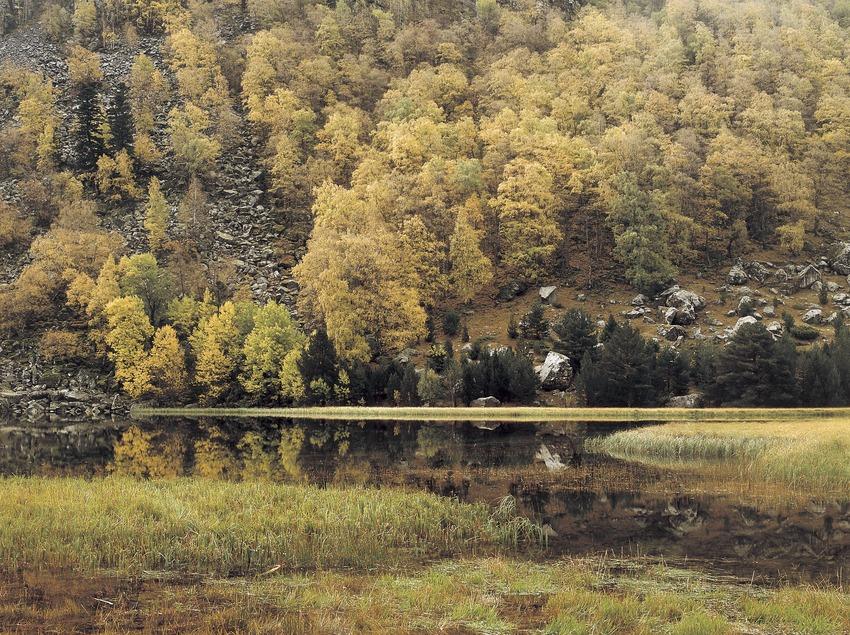 El lago Llebreta en otoño, en el Parque Nacional de Aigüestortes i Estany de Sant Maurici.  (Kim Castells)