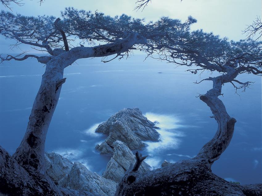 Vista de les roques de Ses Illetes.  (Kim Castells)